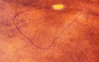 Как удалить шариковую ручку с кожаного дивана?