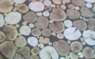 Чем заливают столешницу из среза дерева?